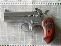 Bond Arms Snake Slayer IV
