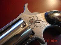 North American Arms 1 of 500 Talo, Vivda Negra- Black Widow spider engraved with 2 real ruby eyes,fitted case,black pearl grips,manual etc.never fired