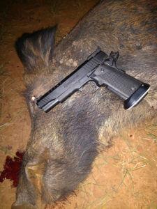 The Indomitable .40 S& 038;W Goes Hog Hunting