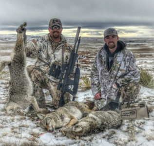 Prepping for Fur Season & 8211; Coyote Tips from a World Champion