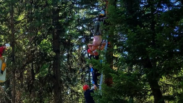 Hunter Airlifted To Hospital After Hanging In Tree For Two