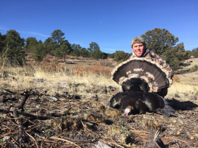 Spring Turkey Hunting Is Coming and It& 8217;s a Great DIY Hunt Opportunity