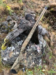 Browning Cynergy Shotgun Review