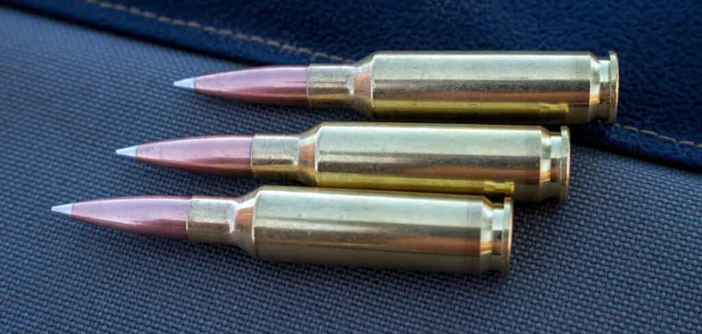 The 6 5 Creedmoor One Mile Gun With The New Hornady A Tip Gunsamerica Digest