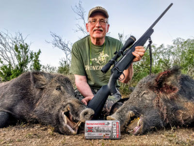 Hunting with The New 350 Legend Cartridge: Bye, Bye 300 Blackout?