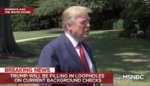 Trump: 'We'll Be Doing Background Checks' & Closing 'Loopholes'