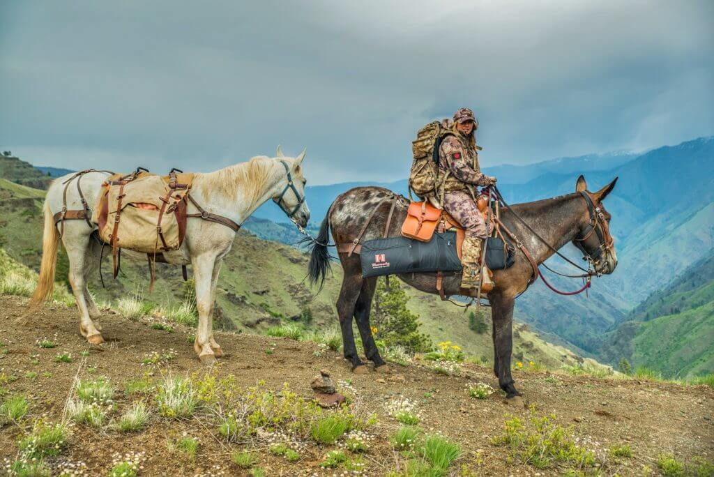 5 Tips For Packing Gear With Horses Mules Gunsamerica Digest