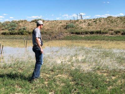 Archery Antelope & 8211; Part II & 8211; Water Source Inspection